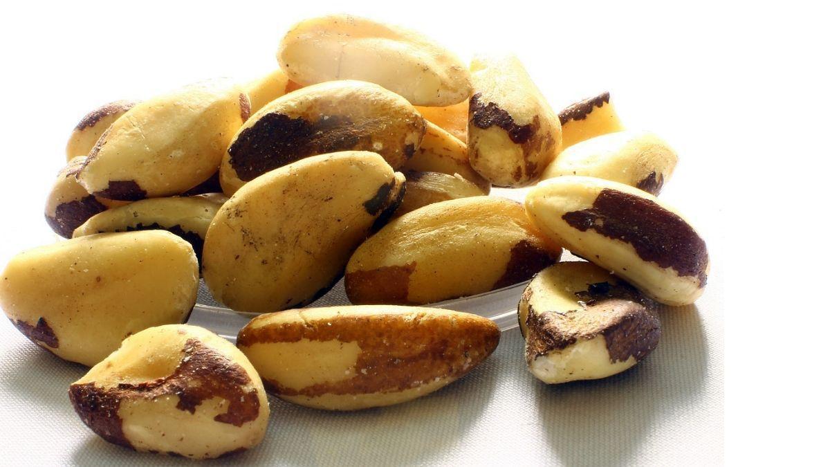 poshak tatvo se bharpoor brazil nuts ke fayde aur nuksaan in hindi