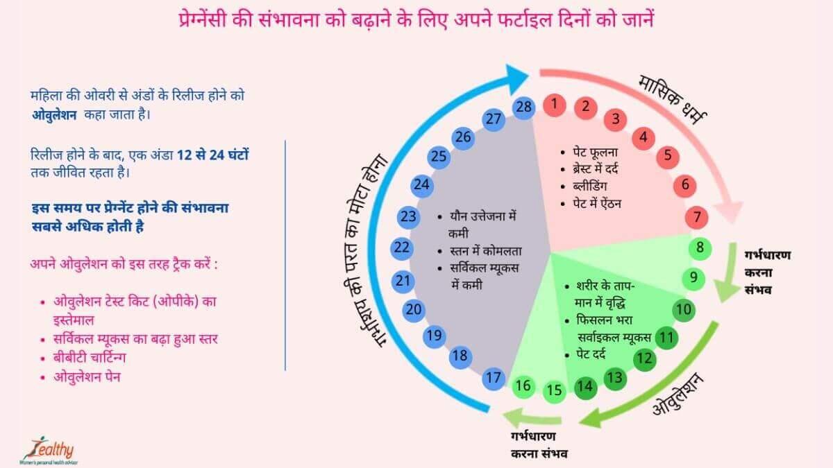 Ovulation in hindi