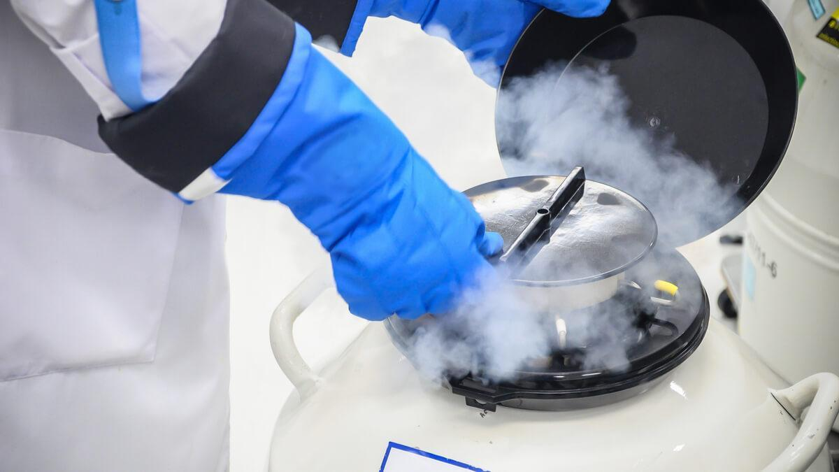 What is Egg and Embryo Freezing?
